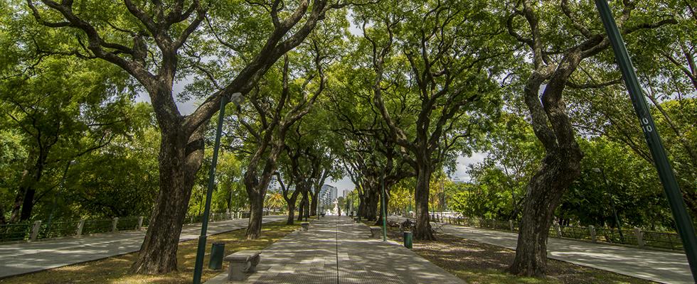 Reserva Ecol 243 Gica Sitio Oficial De Turismo De La Ciudad