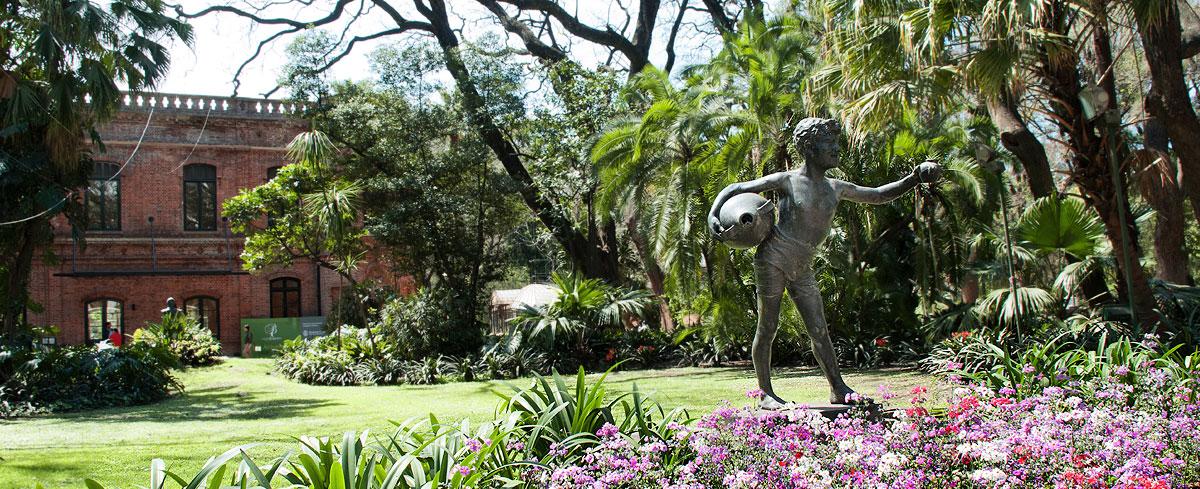 Jard n bot nico sitio oficial de turismo de la ciudad de for Arboles del jardin botanico
