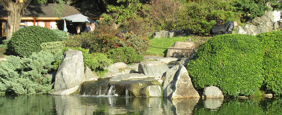 Jard n japon s sitio oficial de turismo de la ciudad de - Plantas para jardin japones ...
